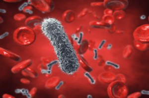 Rise in Indiana HIV and Hepatitis C Outbreaks Concerns CDC
