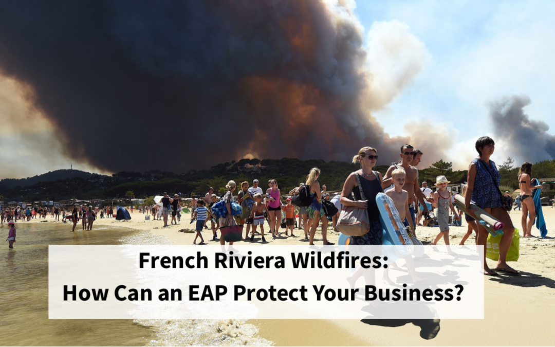 French Riviera Wildfires: How Can an Emergency Action Plan Protect Your Business?